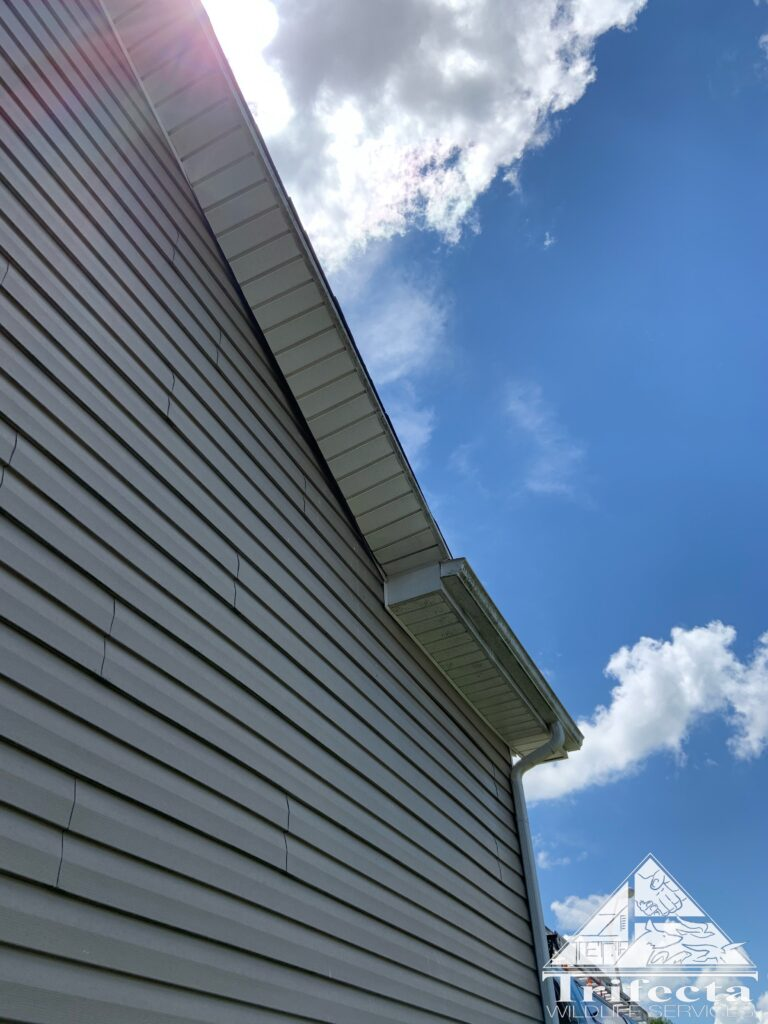 Before picture of the problem soffit showing the warp and subsequent pulling of the vinyl