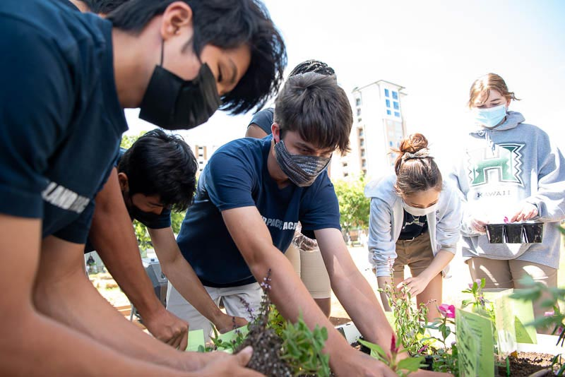 Students planting in the garden