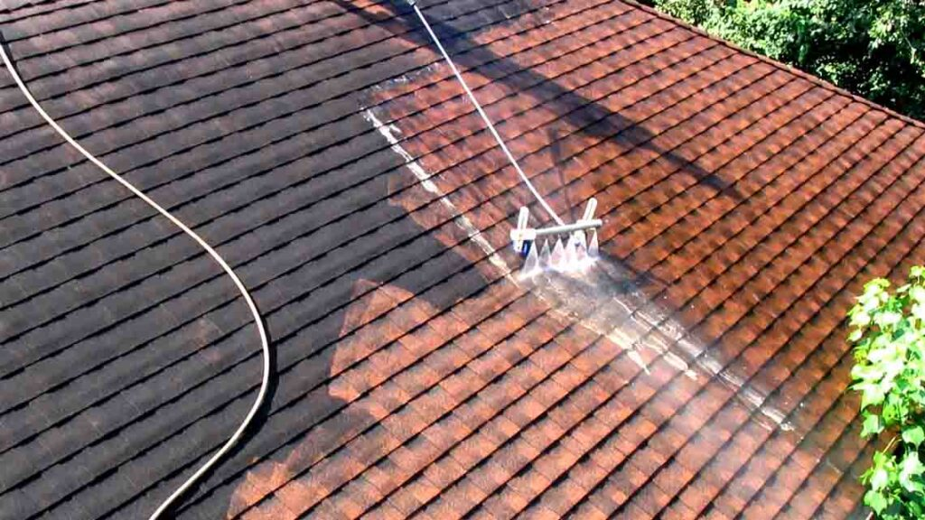 eco-friendly roof cleaning