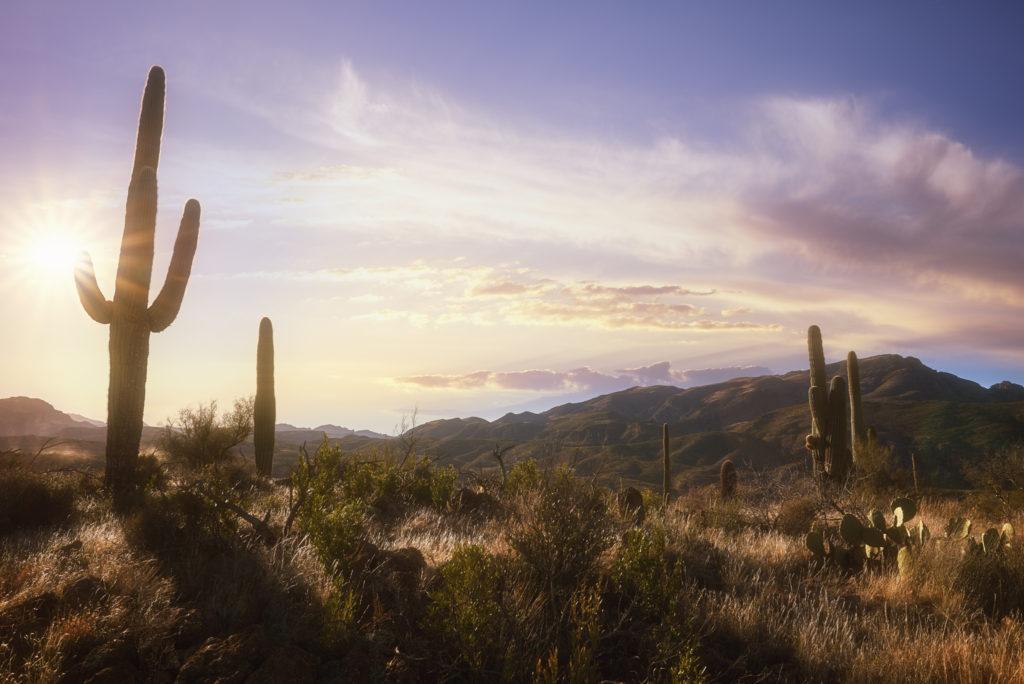 Arizona-Landscape-Photography_31