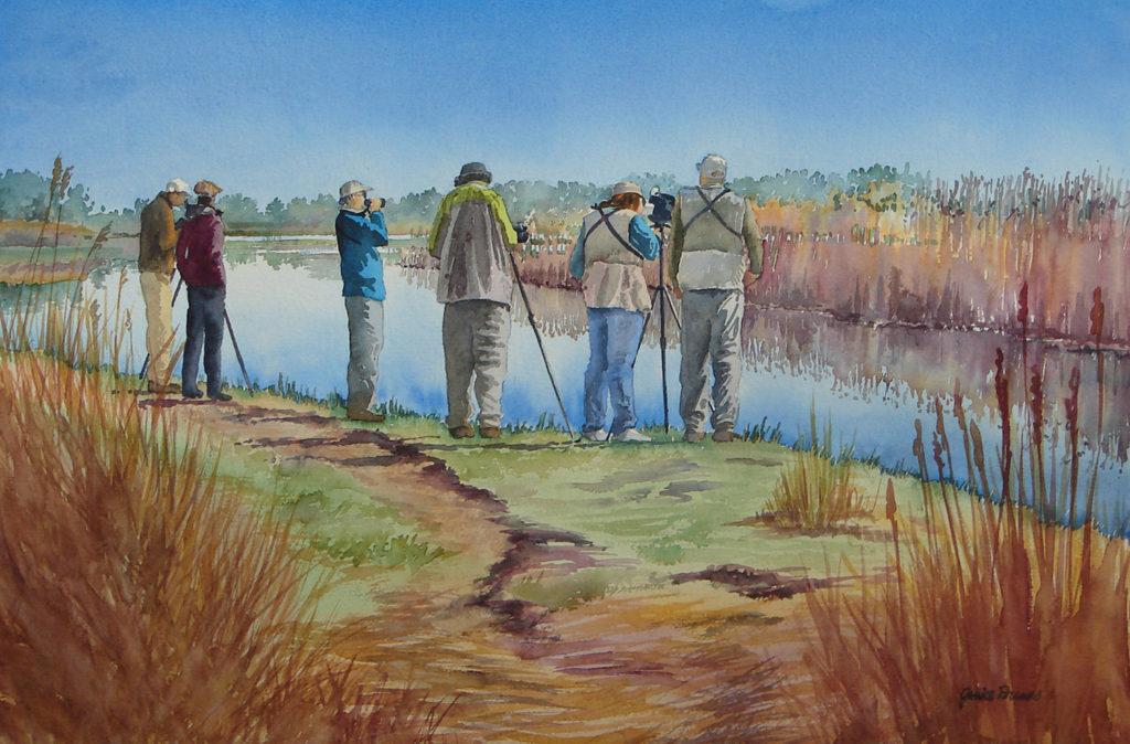 Birdwatching - Janice Dumas
