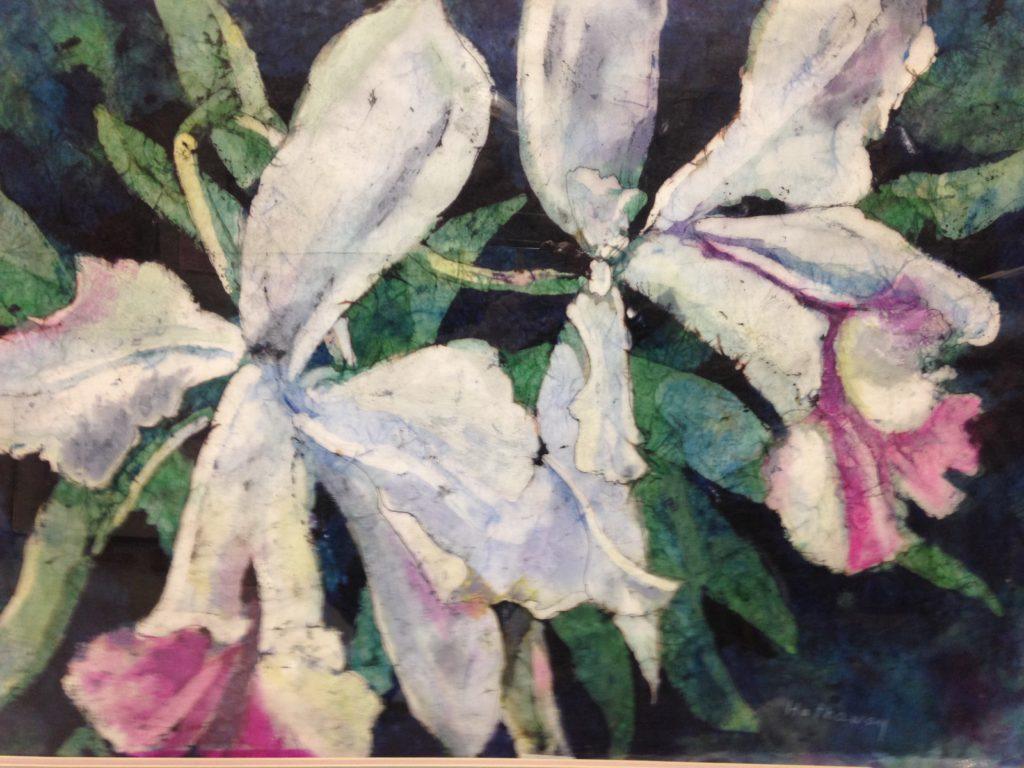 Shirley Hathaway - Brazil Botanical Orchid