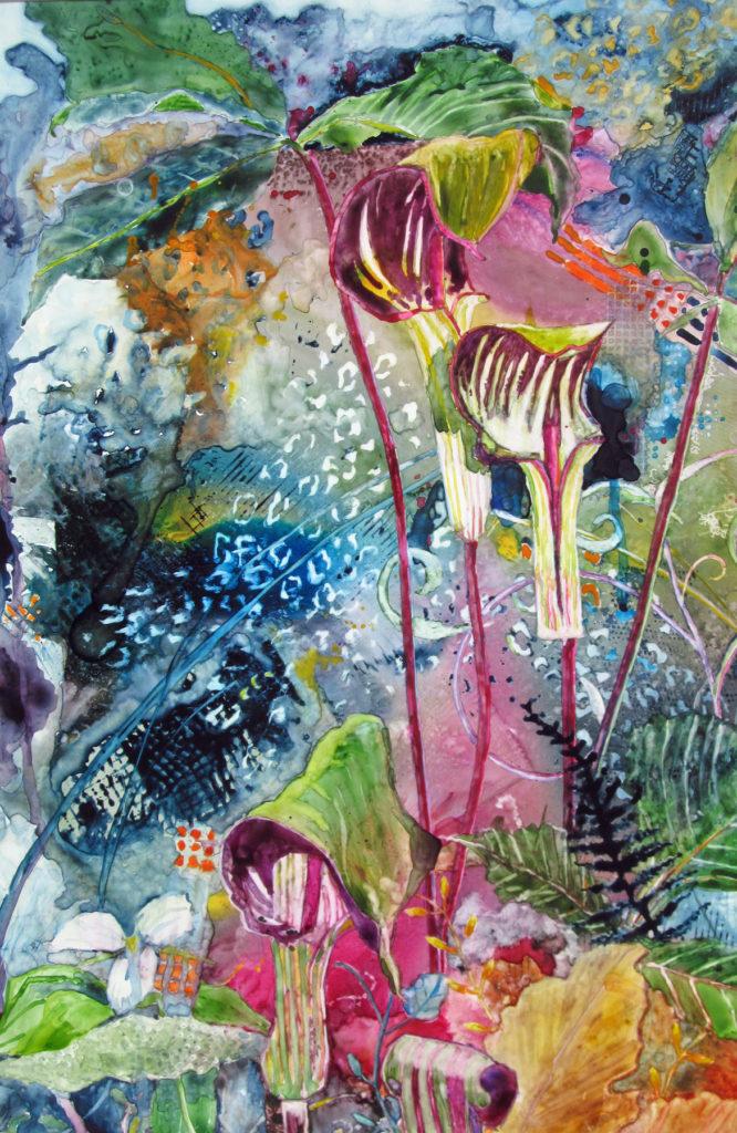 Donna Thibodeau - Deep Woods