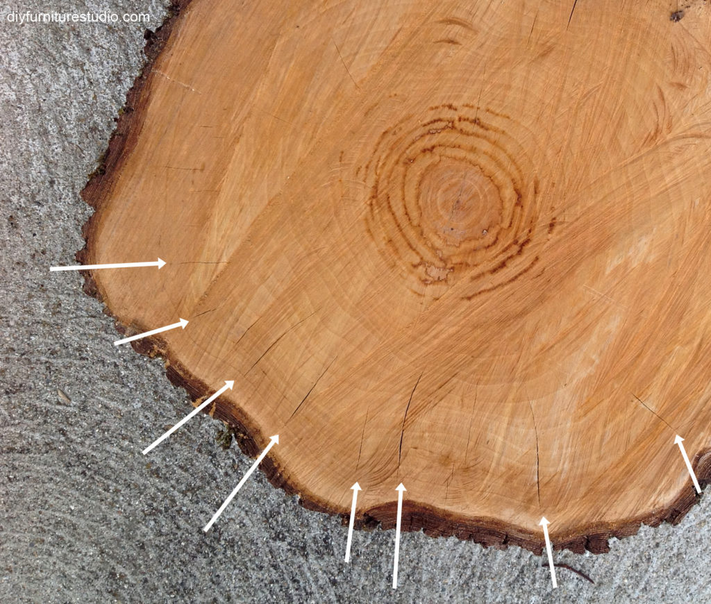 smaller cracks in wood cross section