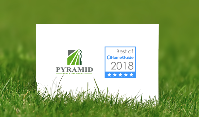 Pyramid Lawn Services Awarded Best Lawn Care 2018 for Jacksonville