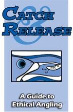 catch-release