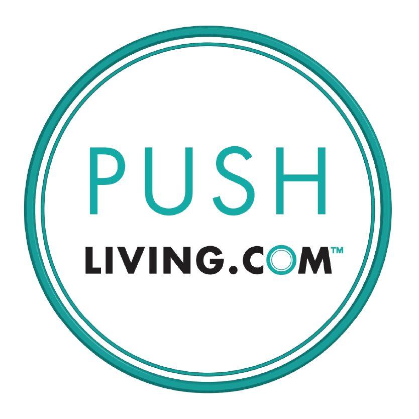 https://secureservercdn.net/198.71.233.83/bgr.cfa.myftpupload.com/wp-content/uploads/2021/08/Push-Living-Inc-01.jpg
