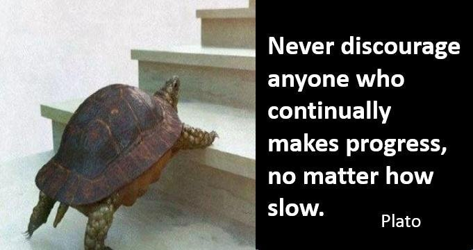 Don't Curse Your Inner Turtle!