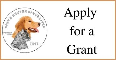 Apply for a Grant with PennyFix Logo