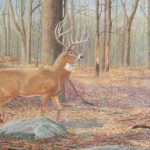 """Fall in the Woods                                                                    30"""" X 68""""                                                                Acrylic on canvas"""