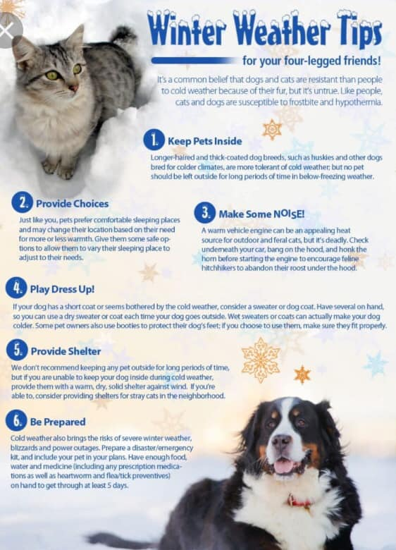 winter-weather-tips