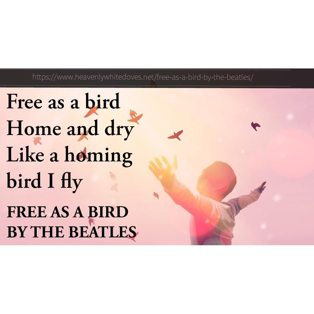 Free As A Bird by The Beatles