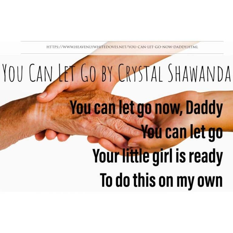 You Can Let Go Now by Crystal Shawanda