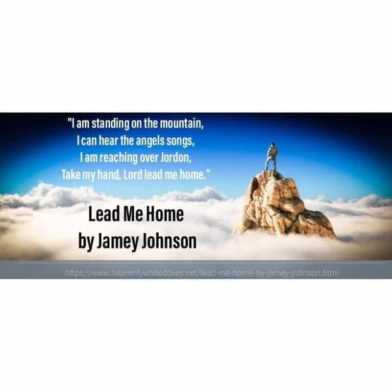 Lead Me Home by Jamey Johnson