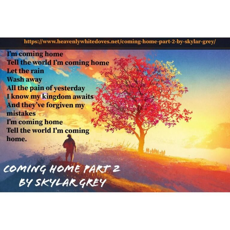 Coming Home Part 2 by Skylar Grey