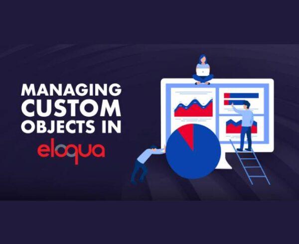 Managing Custom Objects in Eloqua 10