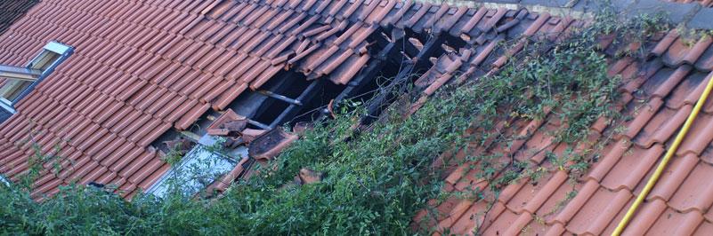 Roof crush accident