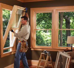 importance of windows
