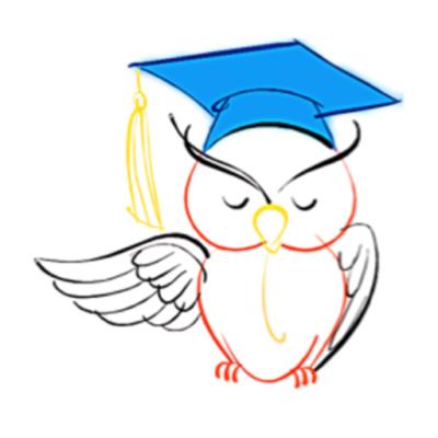 the owls blog