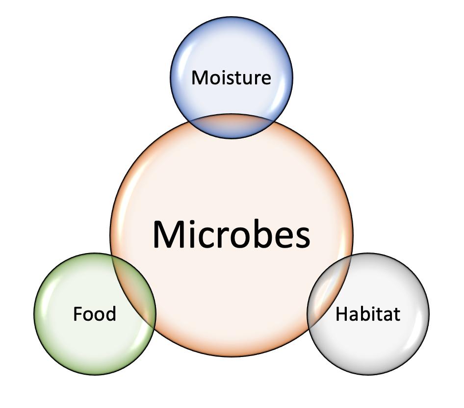 Microbe Needs