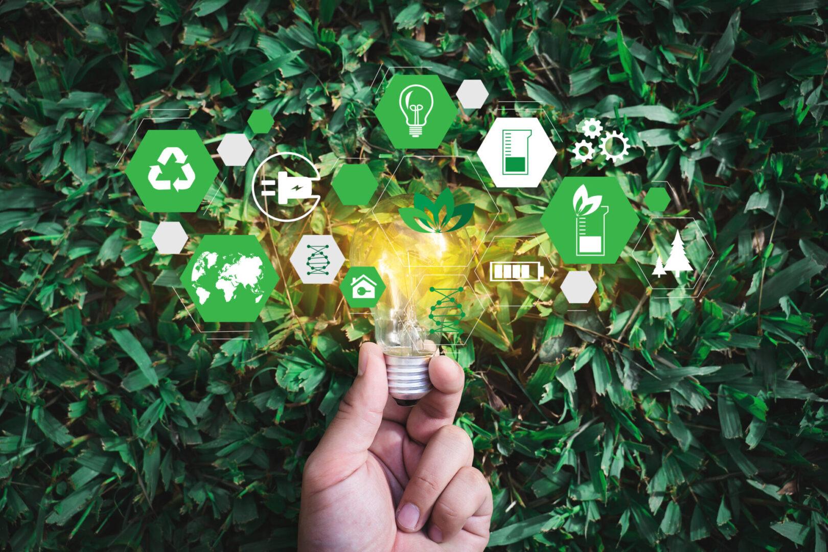 Team,Business,Energy,Use,,Sustainability,Elements,Energy,Sources,Sustainable,Ecology