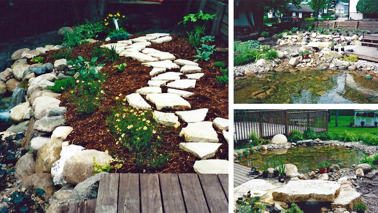 Peter's Pond and Backyard