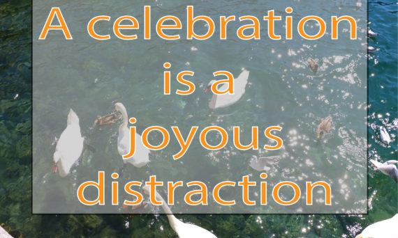 Celebration Quote