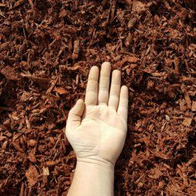 Red Mulch Hand