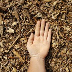 Ground Wood Chips Hand