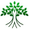 The Business Tree Logo