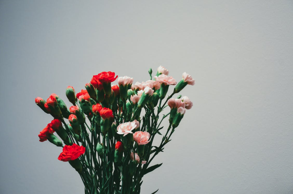 Mother's Day Japan Nomiya Flowers