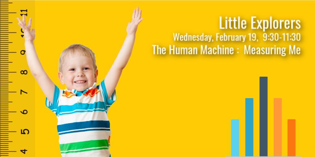 LittleExp T Feb19