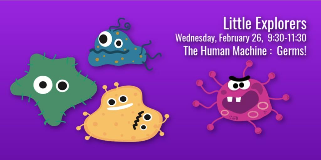 LittleExp T Feb26