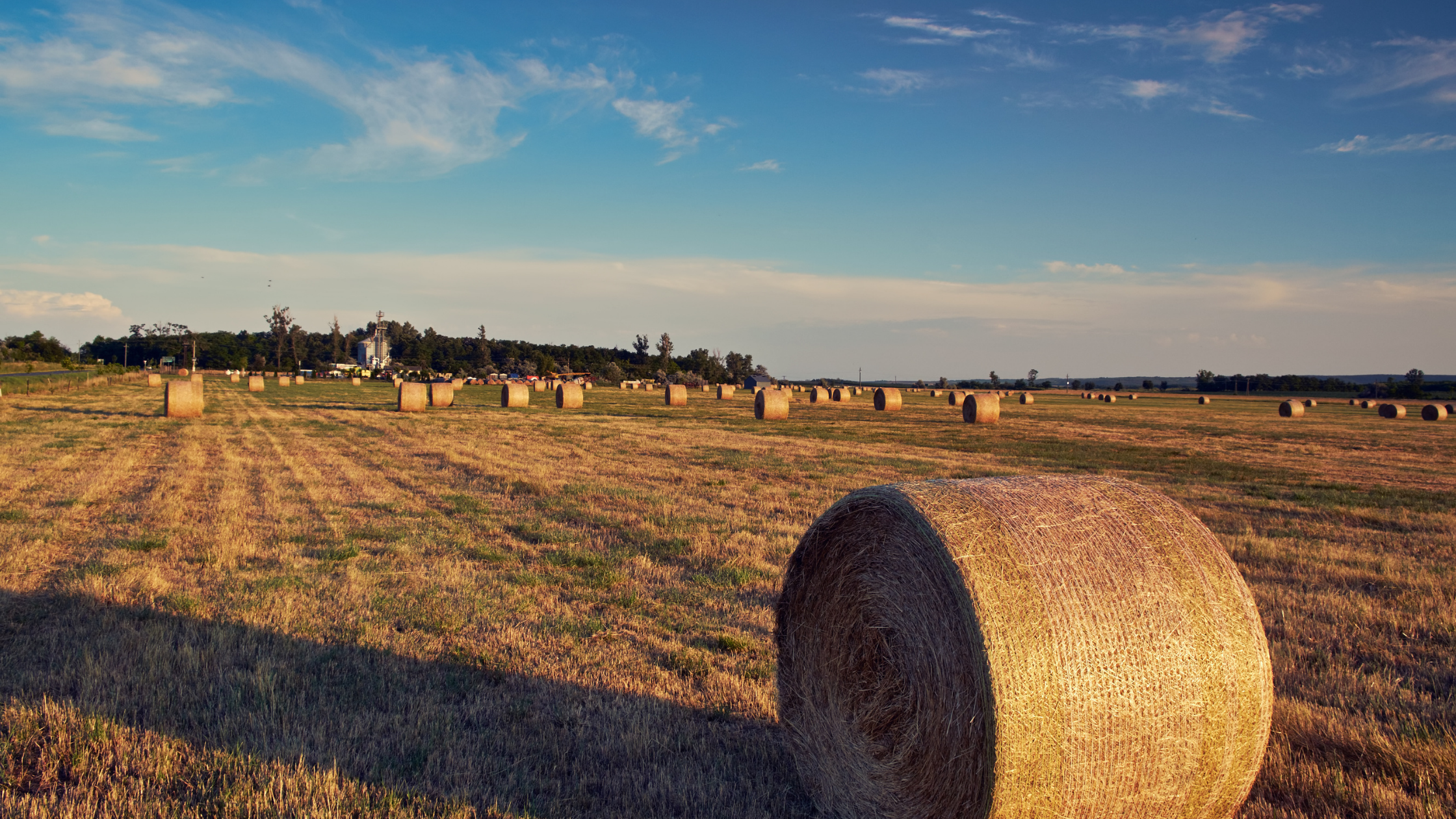 Farmland Classification