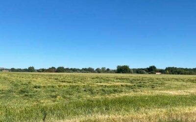 Under Contract – J.O. Kinsfather Property