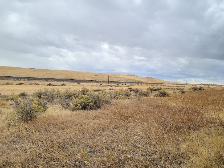 big horn county land for sale
