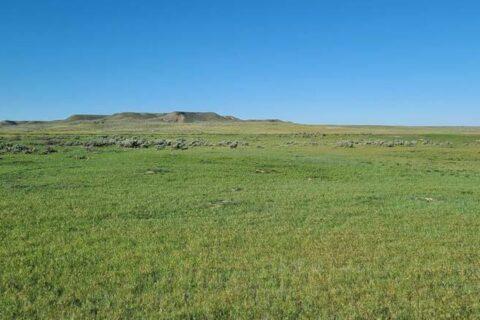 montana farm for sale
