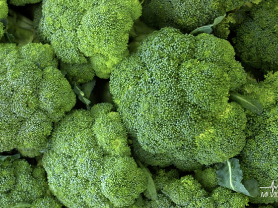 verduras para bajar de peso brocoli