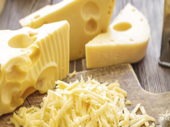 mejores quesos para deportistas tipos