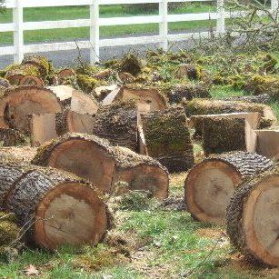 rounds of wood Portland