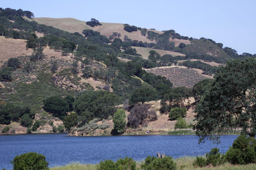Del Valle Regional Park