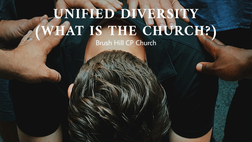 Unified Diversity