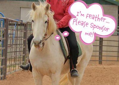 Feather - Dust Devil Ranch Sanctuary for Horses