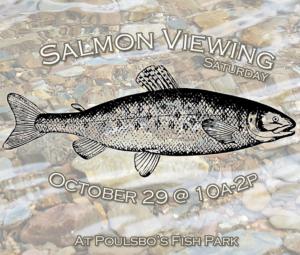 salmonviewingcopy