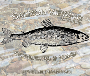 salmonviewingcopy-300x255
