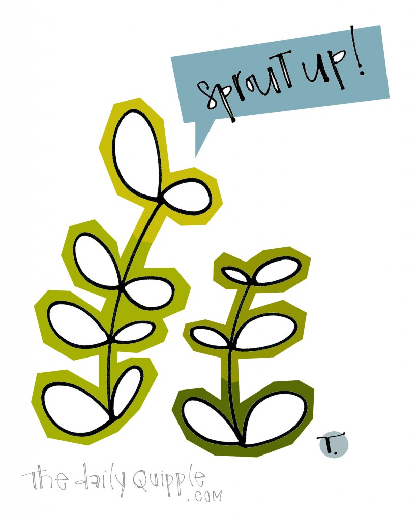 Sprout up!