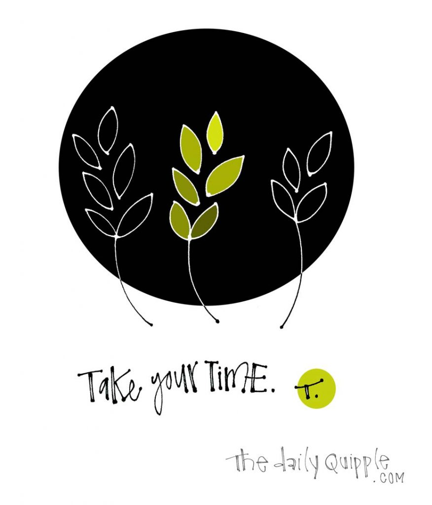 Illustration of growing sprigs and words: Take your time.