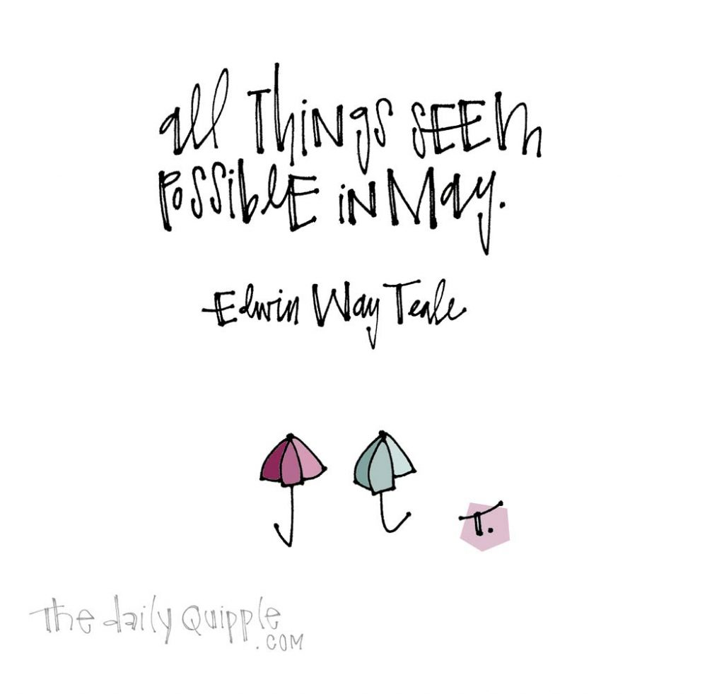 All Things Are Possible in May   The Daily Quipple