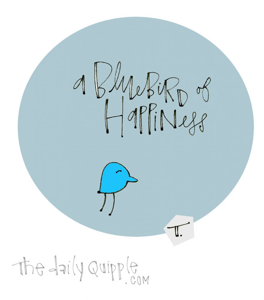 Happy Little Bluebird   The Daily Quipple