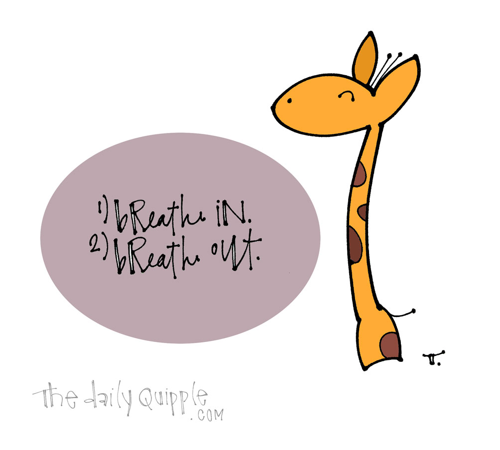 On My To Do List Today | The Daily Quipple